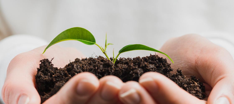 Descomplicando o conceito de ESG