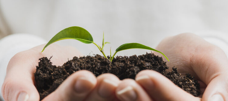 Mejoramos nuestra puntuación en los reportes ESG desarrollados por los especialistas de Sustainalytics